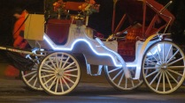 Neon-lit horse-drawn carriage