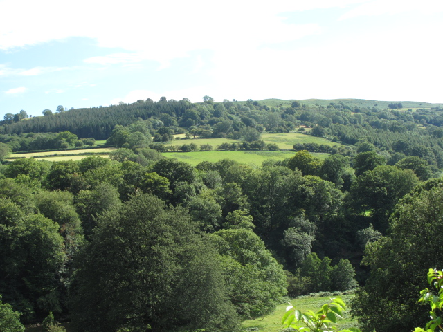Shadings of Green in Wales