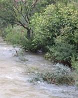 Buèges River overflowing