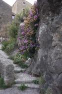 House built into the cliff in Pégairolles de Buèges